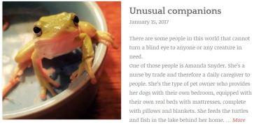 unusual-companions
