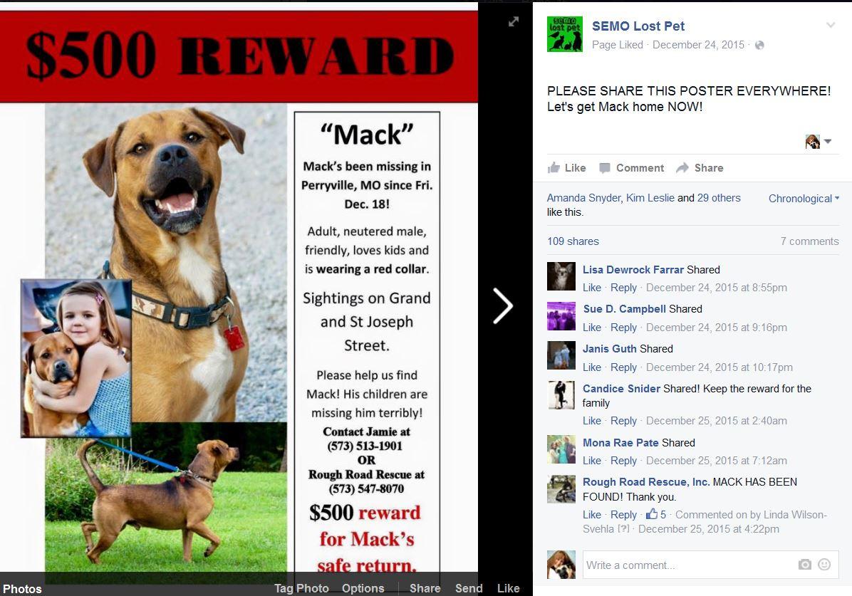 Mack has been found - semo lost pet.JPG