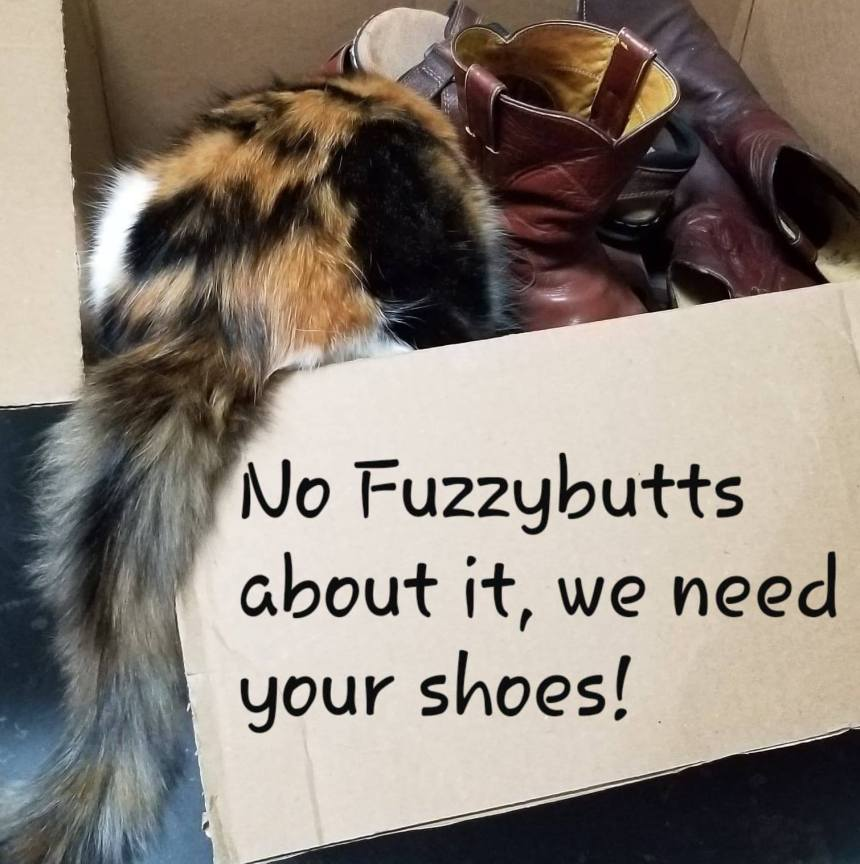 Shoe Drive Fundraiser | Caruthersville Humane Society